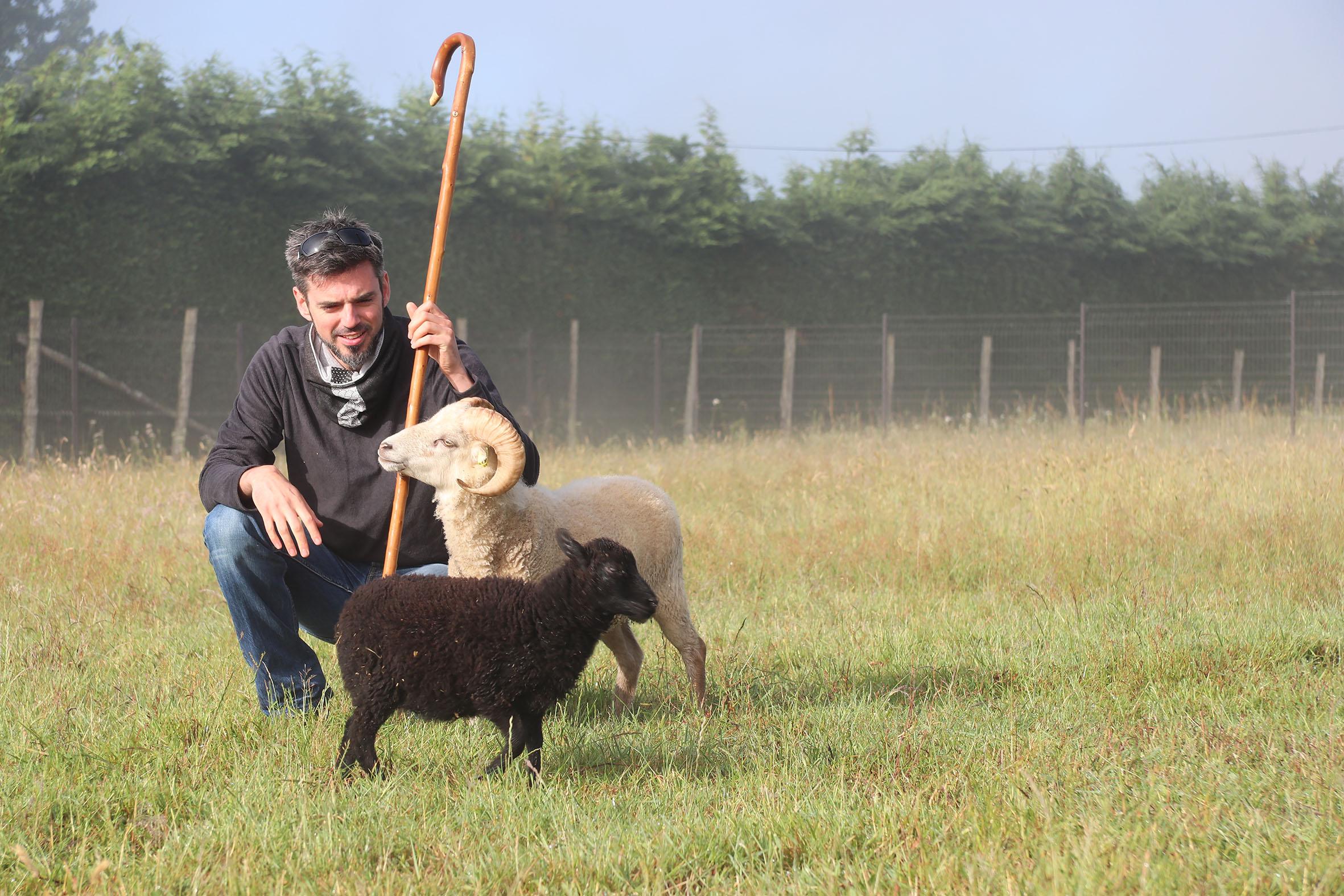 Les Moutons Urbains – berger et ses animaux
